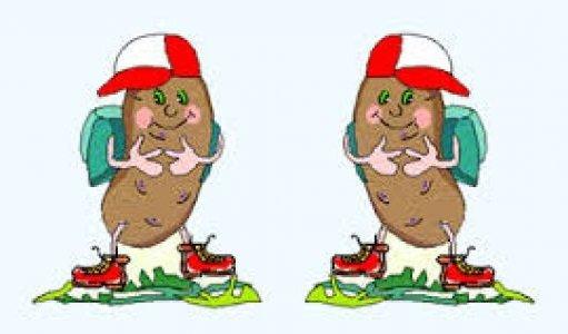 Rajd Pieczonego Ziemniaka