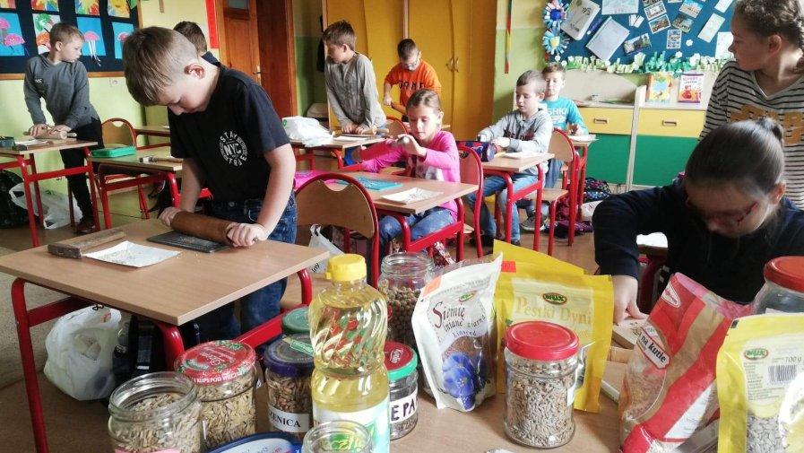 Lekcja o roślinach zbożowych i oleistych w klasie III